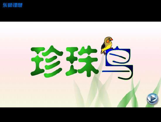珍珠鸟flash视频素材 人教版