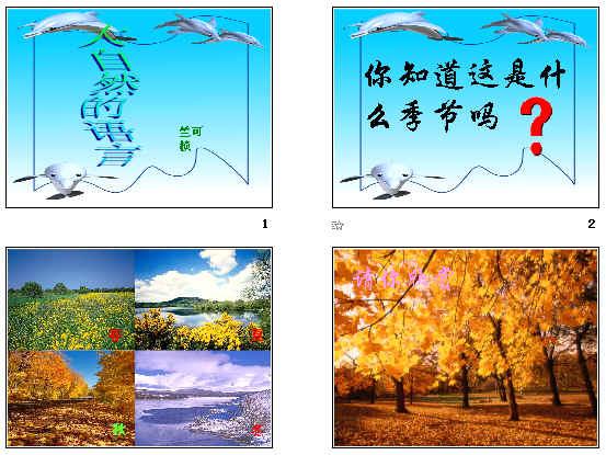 《大自然的语言》ppt71
