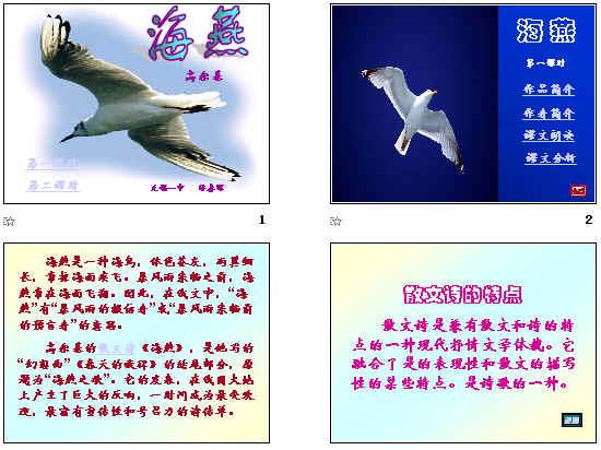 海燕知识结构图