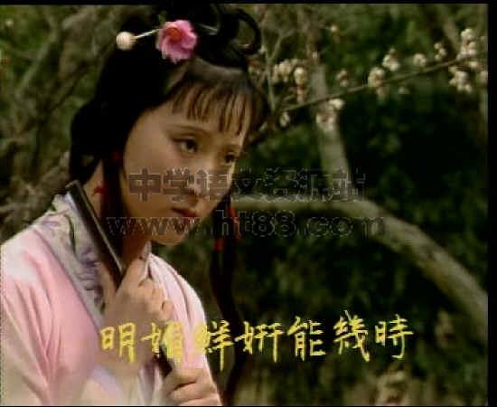 黛玉葬花歌曲人教稻壳版v歌曲视频视频图片