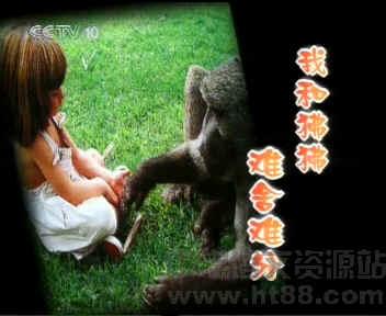 我的野生动物朋友《我和狒狒难舍难分》