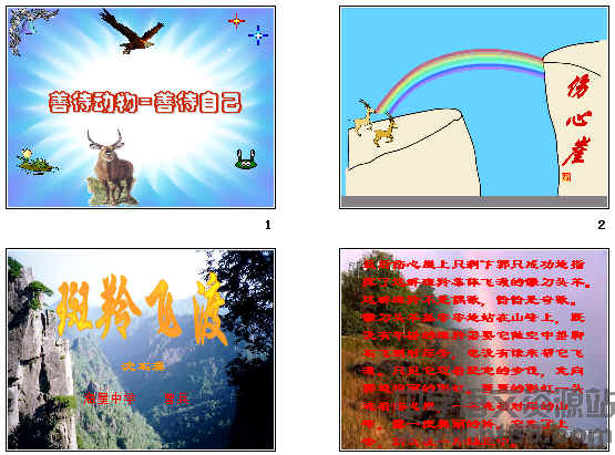 《斑羚飞渡》课堂实录