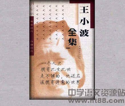 王小波全集 电子书