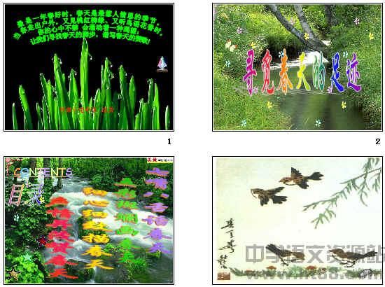 综合性学习:寻觅春天的踪迹(寻觅春天的足迹)ppt19