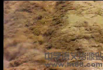 黄河颂视频视频4素材版情用人教图片