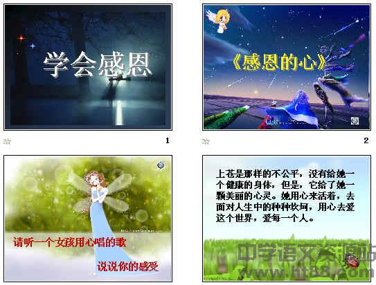 主题班会:学会感恩ppt7