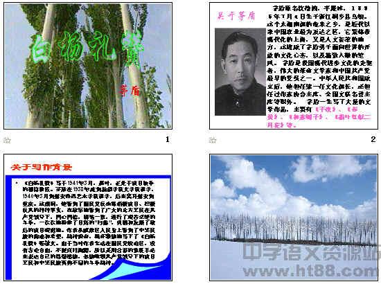 白杨礼赞板书设计图展示