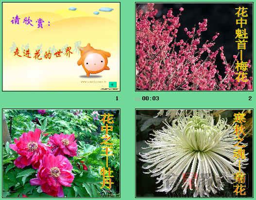 花的传粉和受精及果实和种子的形成