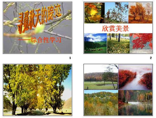 综合性学习 寻觅秋天的踪迹 ppt2