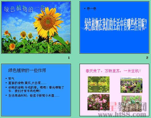 [七年级上册课件] 《植物种子的萌发》ppt5 共24张,另有教案和素材。   第十一课 植物种子的萌发(2课时)   第一课时   一、教学目标   1、知识和技能:通过观察学会描述种子的结构和种子的萌发过程,学会自主、合作探究学习的学习方法 星级: 5