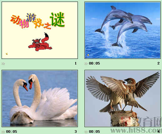 动物游戏之谜ppt65 人教课标版