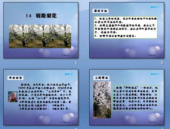 作者档案,文题解说,写作背景,生字难词,课文解析,结构图示,主题概括