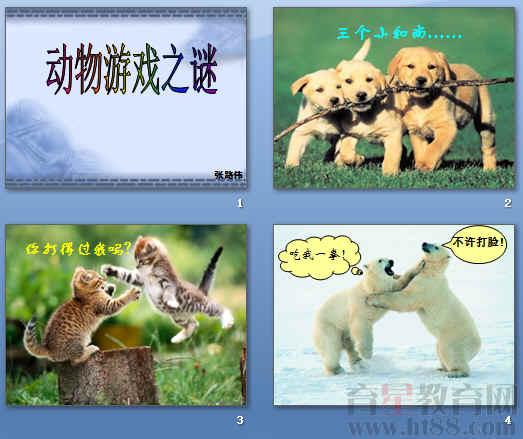 《动物游戏之谜》ppt77